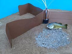 Creating Fish Habitat In Your Large Pond | Trees and ...