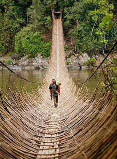 Amazing Bridge... but where is it? how is it constructed? I want to see it from the side... look at the weave... Oh piterest can be soooo frustrating!