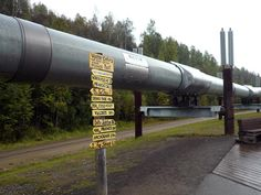 Fun Things to Do in Fairbanks Alaska: View a Stretch of the Trans-Alaska Pipeline