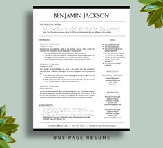 resume-templates resume8