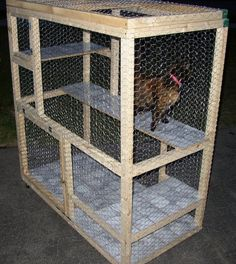 How to Build a Cat Cage Outdoor Cat Pen, Cat Cages, Cat Run, Cat Enclosure, Cat Condo, Feral Cats, Cat Wall, Catio, Dog Houses