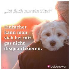 Sprüche für Tierliebhaber Animals are the best friends of man. True Friends, Best Friends, Cats And Cucumbers, Love And Co, Cute Funny Dogs, Quotation Marks, Cat Facts, Love And Respect, Dog Quotes