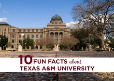 Best Texas Am College Station Images  Am College Station   Fun Facts About Texas Am  College Station