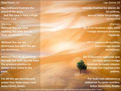 The long view + La visión a largo plazo  Passage: https://www.biblegateway.com/passage/?search=Ps+14&version=NIV;NVI;NLT;NCV;MSG