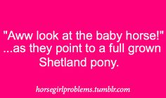 OH EM GEE I hate this lol I'm like ummm no that is an adult gelding/mare right there..-.-