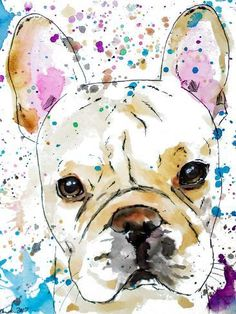 Stretched Canvas Print: French Bulldog by Allison Gray : Watercolor Animals, Watercolor Paintings, Watercolour, Grey French Bulldog, Grey Art, Gray, Stretched Canvas Prints, Framed Artwork, Dogs