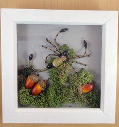 Beaded scorpion in shadow box frame, Entomology contemporary frame gift Wooden Shadow Box, Shadow Box Frames, Etsy Handmade, Handmade Items, Handmade Gifts, Handmade Headbands, Handmade Rugs, 30 Birthday Gifts, Contemporary Frames