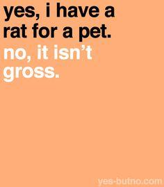 Wish i still had my rats!!