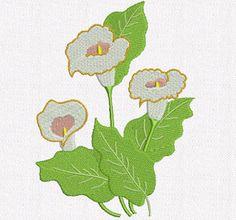 Bordados Creative: Bordados grátis - Matriz floral - Copo de leite