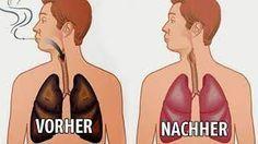 Oft hört man von der Reinigung des Blutes, der Haut, der Haare oder des Darms, doch auch die Lungen nehmen täglich Schadstoffe auf, die sich ansammeln und Krankheiten verursachen können. Die Lungen…