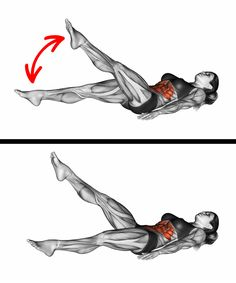 10 Simple Moves to Get a Tiny Waist and a Flat Stomach Abdominal Muscles, Thin Waist, Small Waist, Flat Tummy, Flat Stomach, Rectus Abdominis Muscle, Female Fitness Transformation, Reverse Crunches, Flat Abs
