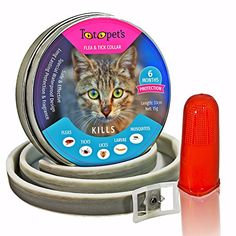 (Product review for Pet Flea and Tick Collar for Cats and Kittens - 6 Months Protection, Stops Bites, Itching, Kill Insects, Larvae, Eggs and More - Waterproof, and Fully Adjustable by Totopet's™) Explaindio Video Creator free CC footage module Explaindio Video Creator SoftwareMadeItOnline Academy – Freshman Level Do you know it is possible to make over $1000 in your first 30 days; by applying these strategies I … Stress Management I show you how to control yo