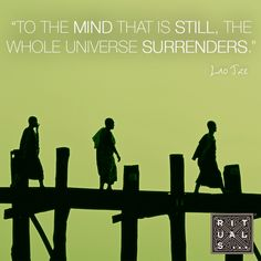 To the mind that is still, the whole universe surrenders - Lao Tze