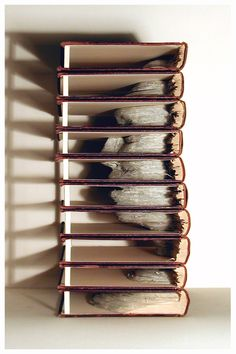 "Brian Dettmer ""Grolier"", 2005, Altered set of Vintage Encyclopedias, 16""(h) x 9.5""(w) x 7""(d)"