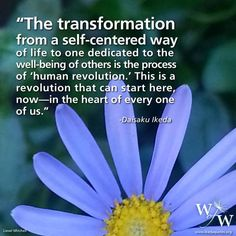 """The transformation from a self-centered way of life to one dedicated to the well-being of others is the process of 'human revolution.' This is a revolution that can start here, now - in the heart of every one of us"" - Daisaku Ikeda"