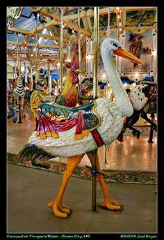 Carousel Animals   absolutely love this antique menagerie carousel the animals have ...
