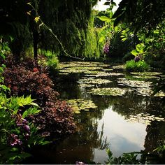 Jardins de Monet - França