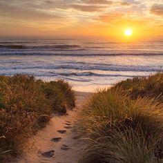Waikuku Beach, New Zealand #googleguides Instagram photo by @nicoram.nz •