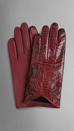 Silk-Lined Snakeskin Gloves Burberry Gifts, Burberry Men, Gucci Men, Leather Gloves, Leather Wallet, Bandanas, Elegant Gloves, Gloves Fashion, Hand Gloves