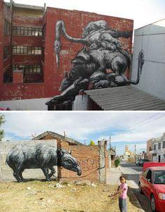 Belgian artist ROA, just north of distrito federal, mexico