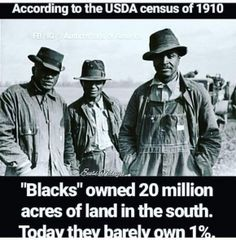 World history images Black History Quotes, Black History Books, Black History Facts, Black History Month, Black History Inventors, Black History People, History Articles, History Images, Native American History