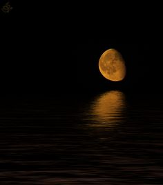 moon & water