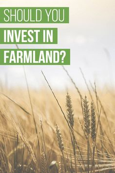 Is farmland a good investment? Historical data says yes. Farmland has outperformed the stock market and real estate for the past four decades, producing double-digit returns. FarmTogether is a crowdfunding platform that allows accredited investors to own a share of a farm in the U.S. This FarmTogether review provides you with all the information you need. Investing For Retirement, Real Estate Investing, Make More Money, Make Money From Home, Best Interest Rates, Get Out Of Debt, Managing Your Money, Best Investments