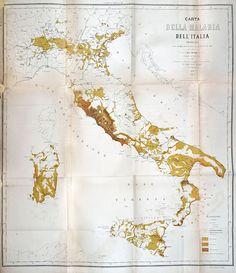 Carta della malaria dell'Italia, L. Torelli, Firenze, 1882