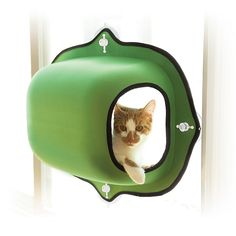 Make all of your kitty's dreams come true with K&H EZ Mount Window Pod Kitty Sill. This mounts on any window to give your kitty an uninterrupted vie. Cool Cat Trees, Cool Cats, Crazy Cat Lady, Crazy Cats, Cat Tree Plans, Gatos Cool, F2 Savannah Cat, Cat Room, Cat Supplies