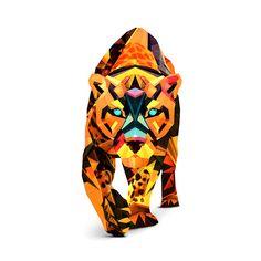 Beautiful geometric designs explore animal forms   Illustration   Creative Bloq