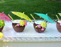 Party Frosting: Luau Party ideas and inspiration
