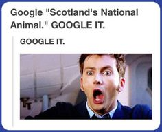 Duuuude!!!! No joke I made that exact face...seriously google it...google it right now!!!