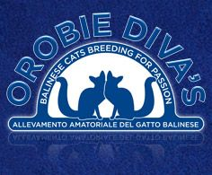 Orobie Diva's - Balinese Cats Cattery from Italy - Breeding for passion!