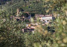 Montemagno, Calci, Pisa - Tuscany - Italy
