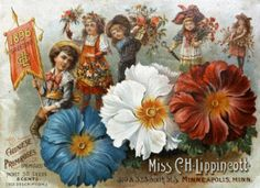Flower seeds / Miss C.H. Lippincott. :: Nursery and Seed Catalogs