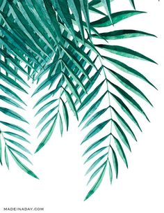 Looking for Tropical Palm Watercolor Wall Art Printables for you home decor? Print on cardstock, frame and hang Watercolor Plants, Watercolor Walls, Free Prints, Wall Art Prints, Decoration, Art Decor, Images Murales, Fleurs Diy, Metal Tree Wall Art
