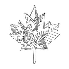 Abstract Line Drawing / Page 5880 / The Page Colouring Book / Canadian Maple Leaf / Canada 150 Logo Alternative / Free Colour. Leaf Coloring Page, Colouring Pages, Free Coloring, Adult Coloring Pages, Coloring Books, Canada 150 Logo, Canada Eh, Abstract Drawings, Abstract Lines