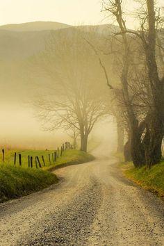 Rue à la campagne