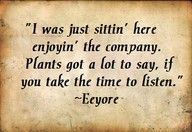I was just sittin' here enjoyin' the company. Plants got a lot to say, if you take the time to listen. I love Eeyore.