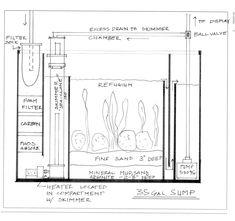 Saltwater Sump Diagram | Thread: My DYI Sump - Need Advice