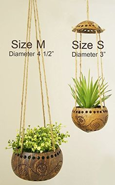 "Exotic Elegance Set of 4 Garden Decorative 4"" Coconut Shell Hanging Planter Pot (Size M). - Exotic garden plants - Plants - Green Garden Products"