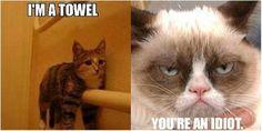 im a towel your a idoit im a toilet