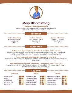 Infographic Style Resume Template  File Under The Rest Of Your