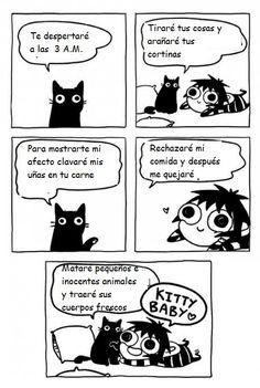 Gatos, nuestros amos y señores