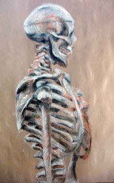 Drawings on Behance Skeleton Drawings, Skeleton Art, Art Drawings, Human Anatomy Art, A Level Art Sketchbook, Natural Form Art, Art Alevel, Ap Art, Sketchbook Inspiration
