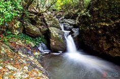 Twin Falls walk in Springbrook National Park, Gold Coast Hinterland, Queensland, Australia Gold Coast Australia, Queensland Australia, Places To Travel, Travel Destinations, Caravan Hire, Twin Falls, Green Park, Nature Reserve, Australia Travel