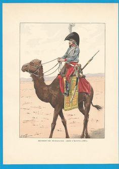 France - Planche de JOB - 1801.Régiment des Dromadaires. Armée d'Egypte.