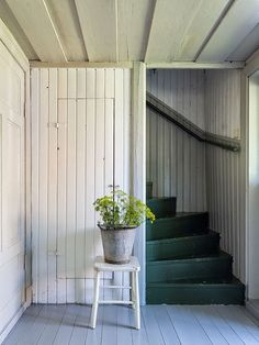 Painted wood cladding, floor and stairs.