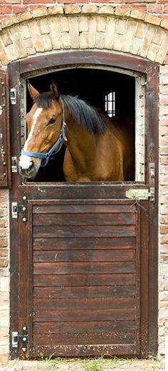posterdepot Türtapete Türposter Pferd im Stall - Größe 93 x 205 cm, 1 Stück, ktt0439