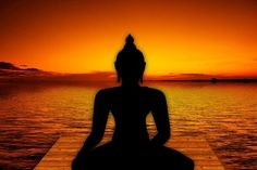 Meditate for 20 minutes a day - The Zen Proverb - Wholistic Beauty Boutique